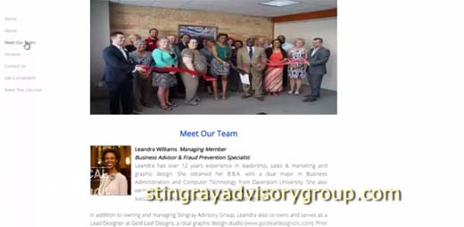 Solutions for Business Growth-Stingray Advisory Group