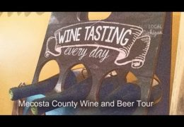 Wine Beer Tour Mecosta County