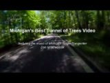 Tunnel of Trees featuring Don Middlebrook